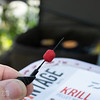 The Advantage Baits Krill Hook Pellet half way along the baiting needle.
