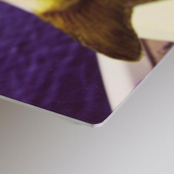 This is a 12x8 Alumini Print in a matt finish. © 2011 Bri