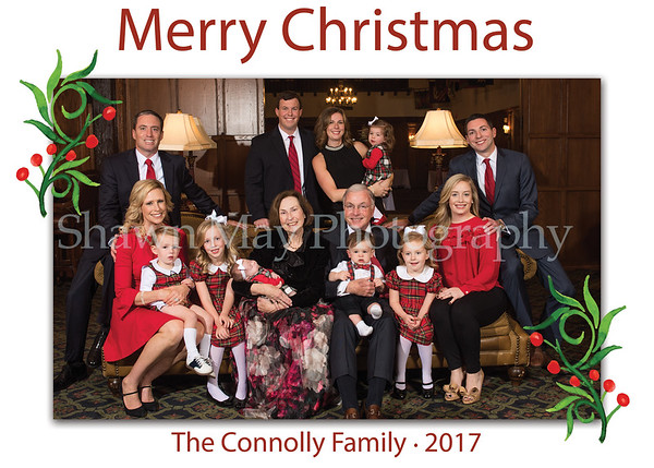 158033_Holiday Card2_120117a