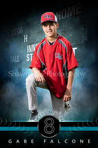 fantasy_baseball_48x72_bannerplayer 10