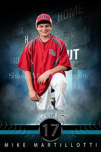 fantasy_baseball_48x72_bannerplayer 2