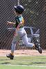 2019 Fall Roswell Baseball 3-6