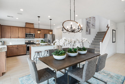 Toll Brothers Reno Alicante at Stonebrook Madrona-online-02