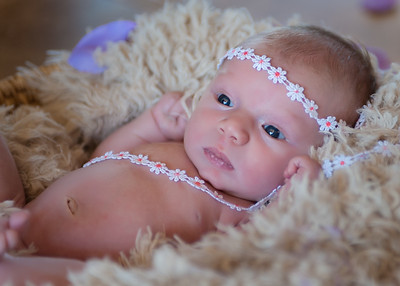 Avalynn_Newborn-13