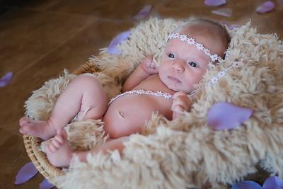 Avalynn_Newborn-12