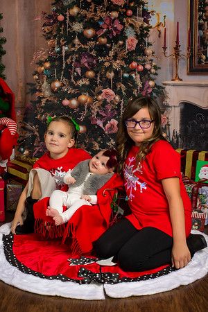 BrownFamily_2019_Christmas_011