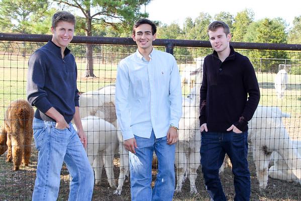 Alpaca Farm-187