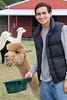 Alpaca Farm-9