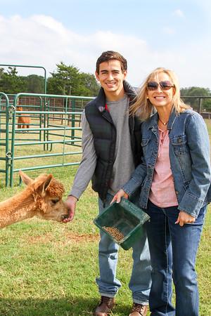 Alpaca Farm-44