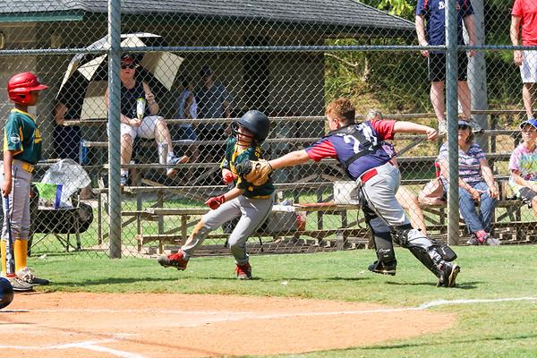 2019 Fall Roswell Baseball 36-12
