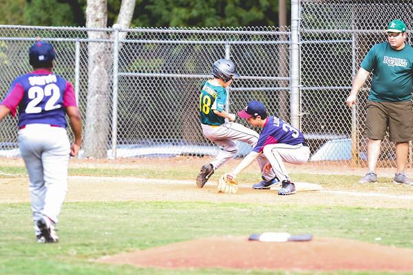 2019 Fall Roswell Baseball 16-8