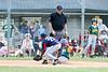 2019 Fall Roswell Baseball 24-7