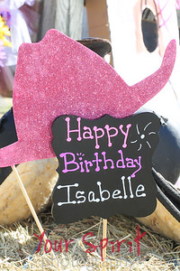 Isabelle's 5th Birthday Party