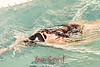 Swim Candids 2-1