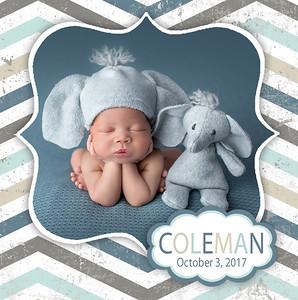 ColemanProof2