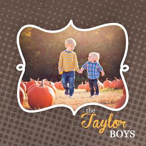 Taylor Family Mini Accordion Album