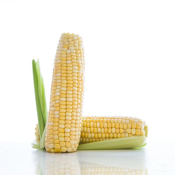 Corn-L.jpg