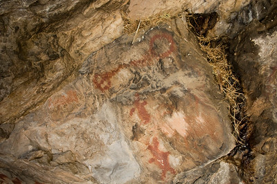 A well defined atlatl, or spear thrower, is painted above two human figures with horned headdresses.  Archaeologists are monitoring the pack rat's nest to insure that the paintings are not damaged.