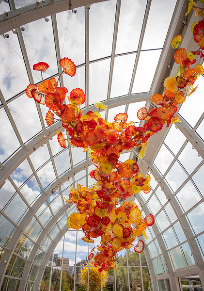 CHIHULY_1768