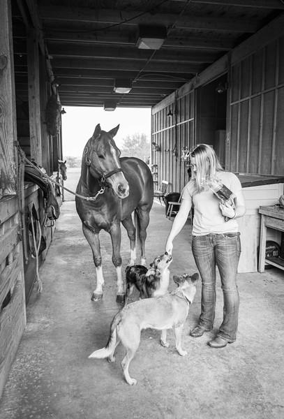 equestrian_photography_vero_beach_family_Gretchen_Giles_photography-5859-2
