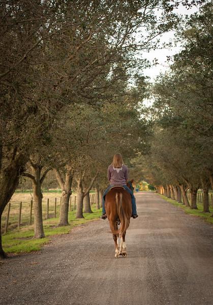 equestrian_photography_vero_beach_family_Gretchen_Giles_photography-6073