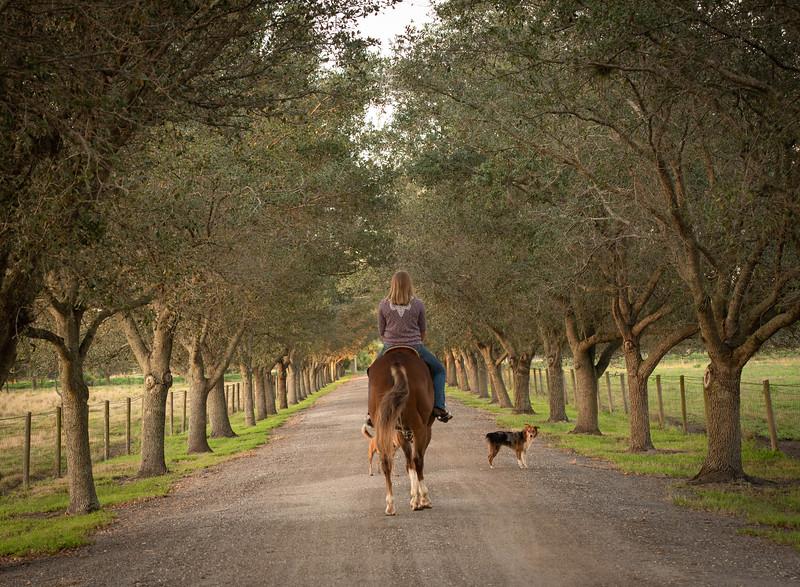 equestrian_photography_vero_beach_family_Gretchen_Giles_photography-6074
