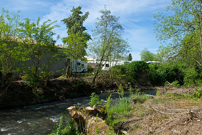 Luther Rd Habitat Restoration Project  -