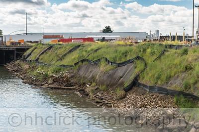 Funderson riverbank seeding project progress.