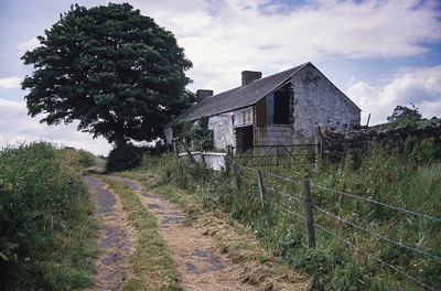 Big Bridge farm, North Ireland, 1988.