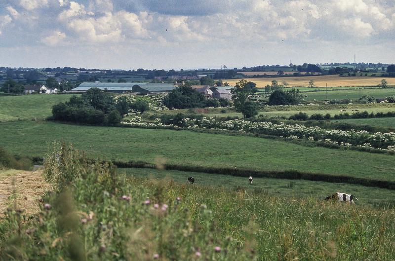 Big Bridge farm, North Ireland, 1988.