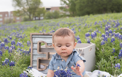 Jill_Bluebonnets_April2017-23