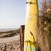 SM180418_0008_Strandboards