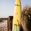 SM180418_0004_Strandboards