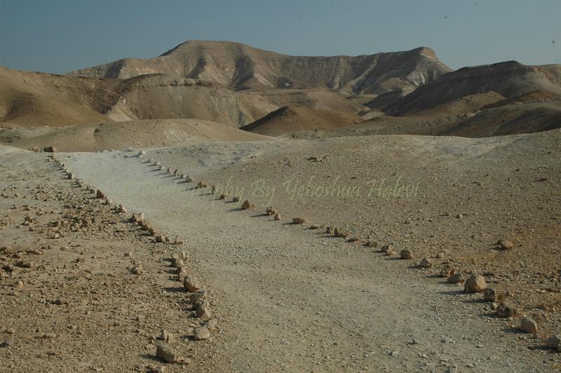 Wadi Deraja 103