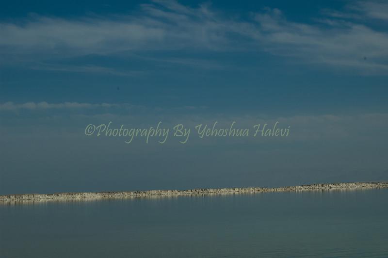 Dead Sea 184
