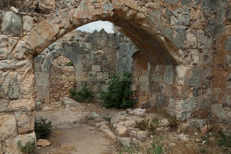 Montfort Castle  119