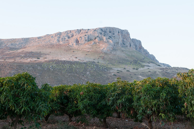 Mount Arbel 032
