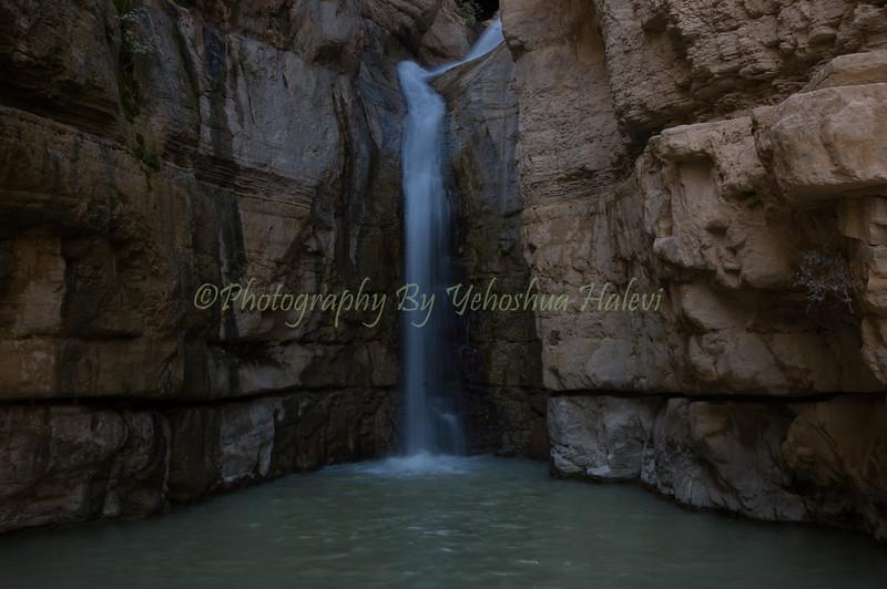 Ein Gedi -Wadi Arugot 022