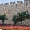 Old City Walls 416