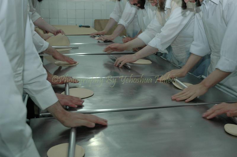 Matzo Baking 169