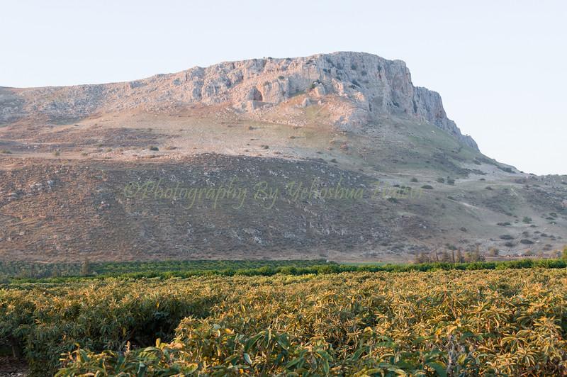 Mount Arbel 037
