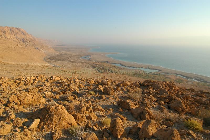 Judean Desert 158