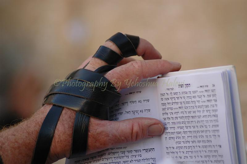 Prayer at Western Wall Kotel 314 (1)
