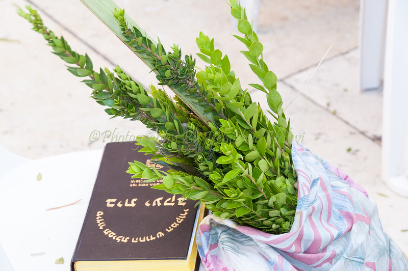 Sukkot - Prayer 120