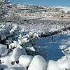 EFRAT - snow scenes-113
