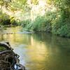 Hermon Stream 031