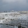 Gush Etzion - Neve Daniel in snow 003