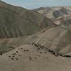 Judean Desert 150