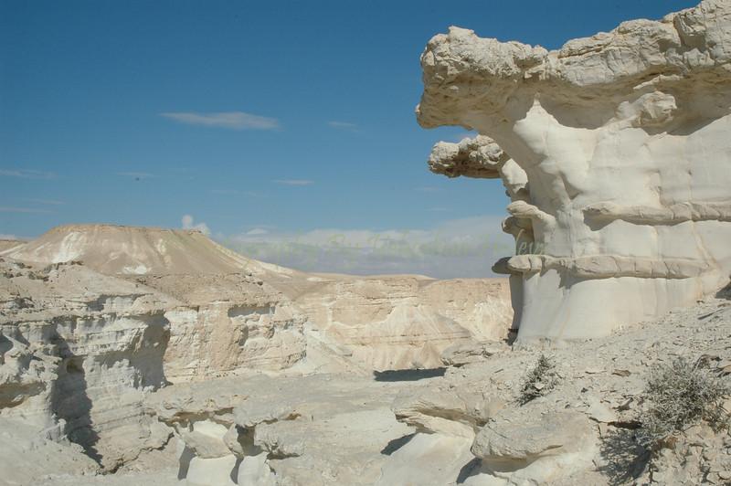 Negev Desert 436