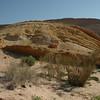 Negev Desert 018